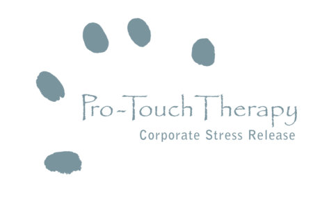 _logo_protouch
